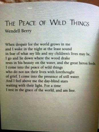 The peace of wild things